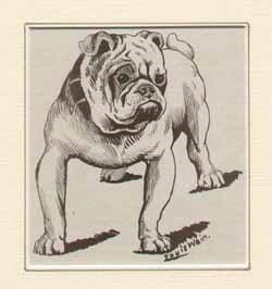 絵犬.jpg
